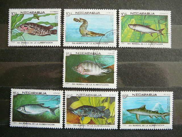 lp038 Zuvys Nikaragva antsp.