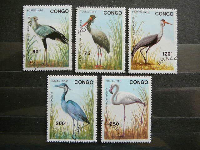 lp055 Pauksciai Kongas antsp.