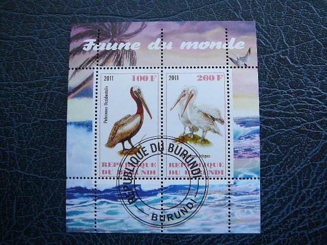 g310 Pelikanai Pauksciai antsp.