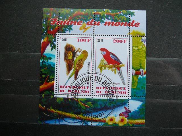 g311 Papugos Pauksciai antsp.