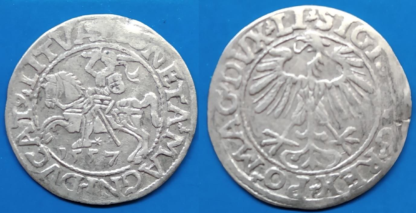 LDK - Ž.Augusto 1557m.pusgrašis