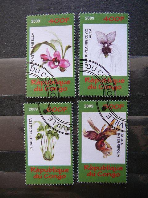 s504 Orchidejos Geles antsp.
