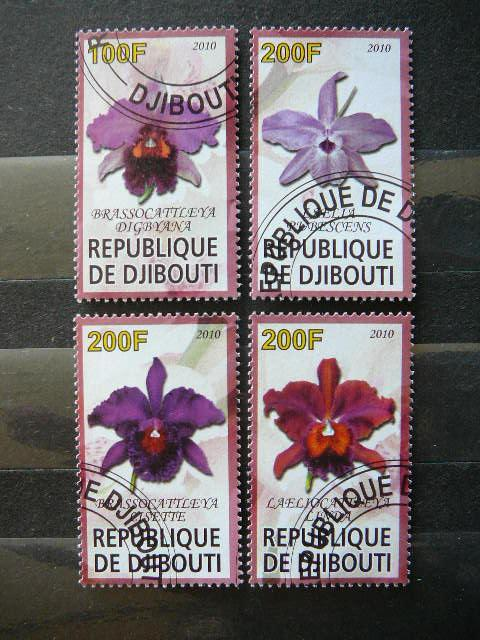 s6871 Orchidejos Geles antsp.