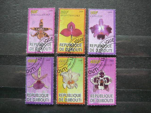 s5471 Orchidejos Geles antsp.