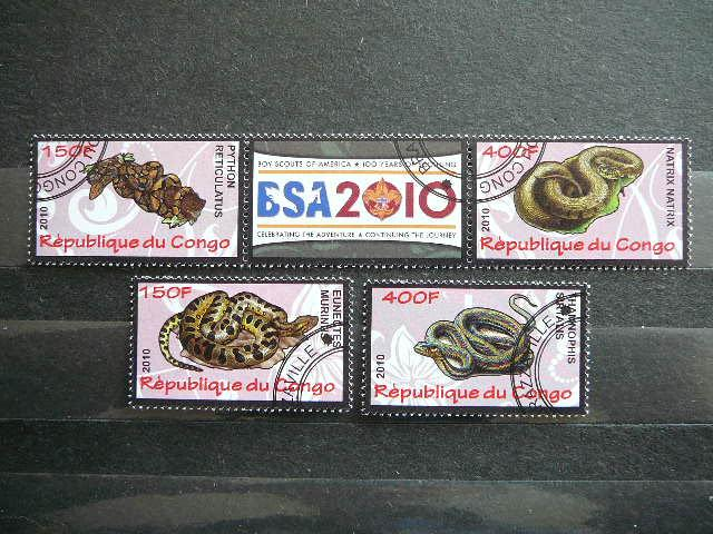 s633 Gyvates Reptilijos antsp.