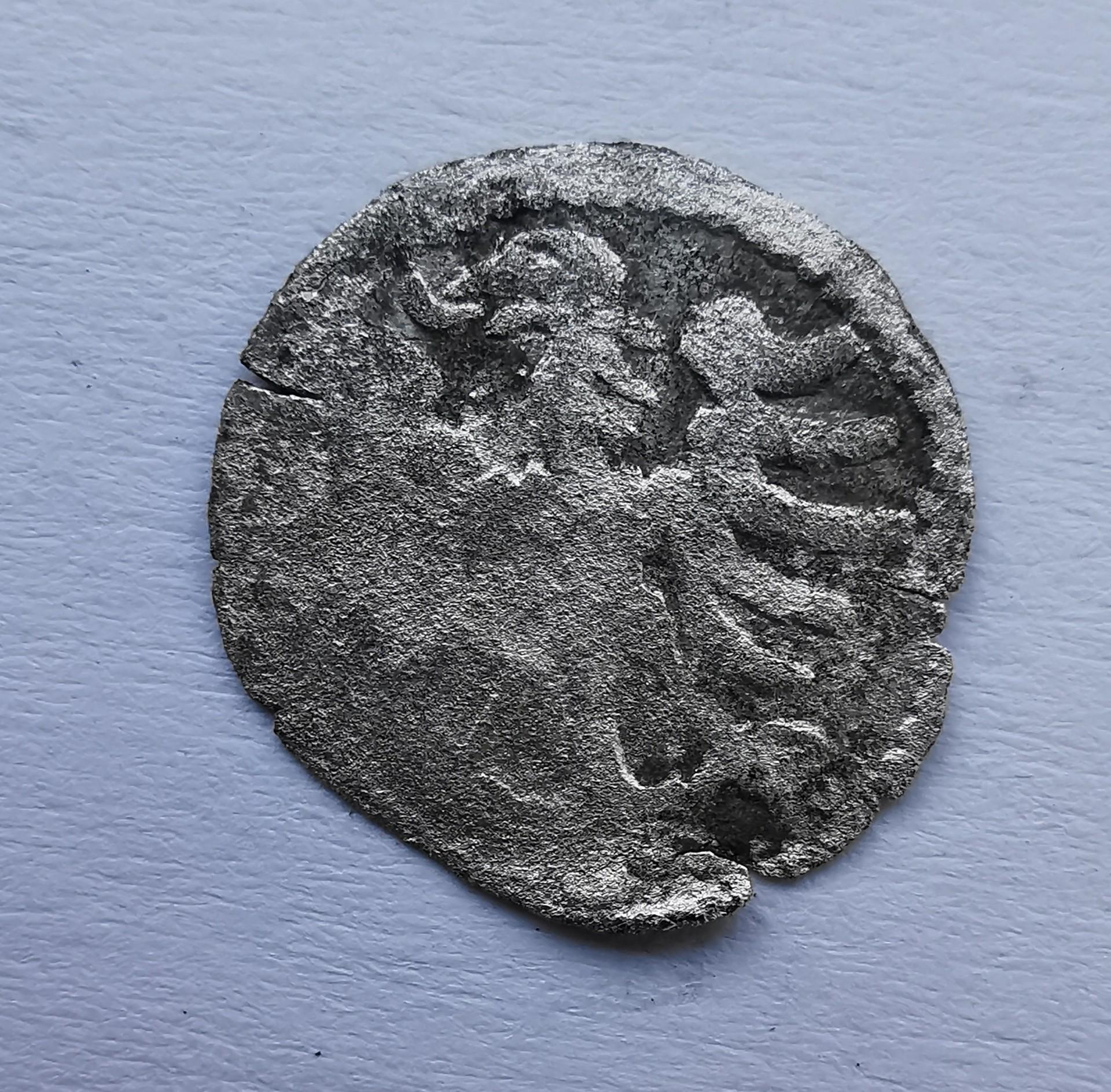 Aleksandro Jogailaičio gotikinis denaras 1495-1506