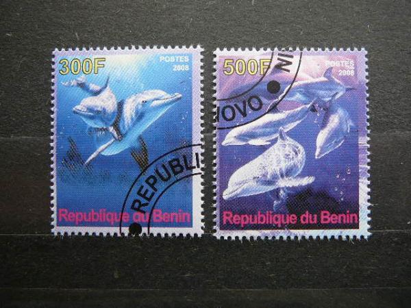 s212 Delfinai antsp.